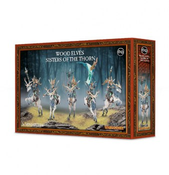 99120204009_SistersoftheThornBox01