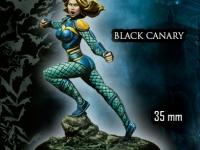 BLACK CANARY - CANARIO NEGRO